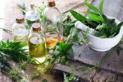 Organic Herbs-Culinary Herbs-Herbal Teas